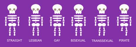 2016-11-19-skeleton